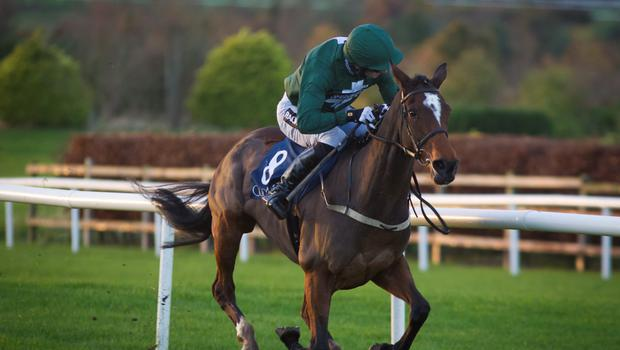 Augusta Kate is owned a celebrity syndicate (Racing Post)