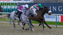CLOSE CALL: One To Go (right) is pipped by Crimewave at Lingfield last month. Pic: Mark Cranham
