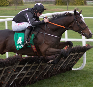 Wonder Laish is the choice of Robbie Power for today's feature, the Galway Hurdle