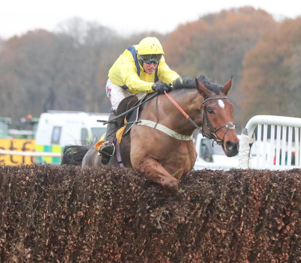 Lostintranslation, ridden by Robbie Power, on the way to victory at Haydock last month. Photo: Grossick Photography