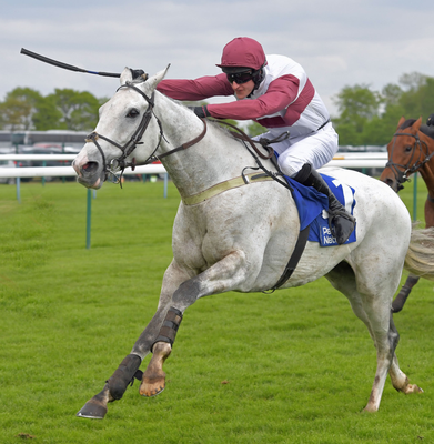 Silver Streak is fancied at Haydock  today, as is Red Infantry in the Peter Marsh Chase
