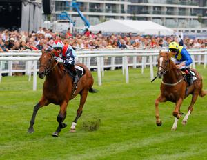 CLASSY SPRINTER: Dream of Dreams go one better at Haydock after his second at Royal Ascot. Pic: Mark Cranham