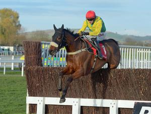 Fox Norton, with Bryan Cooper on board, on the way to winning the Shloer Chase at Cheltenham in November, 2017