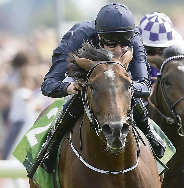 Declaration of War ridden by Joseph O'Brien wins the Juddmonte International Stakes. Picture: John Giles/PA