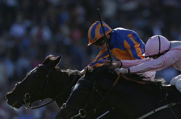 Ryan Moore atop Magician. Photo: Jeff Gross/Getty Images
