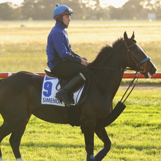 Aaron Madden riding Simenon during trackwork ahead of the Melbourne Cup at Werribee Racecourse on November 3, 2013 in Melbourne, Australia. Picture: Scott Barbour/Getty Images.