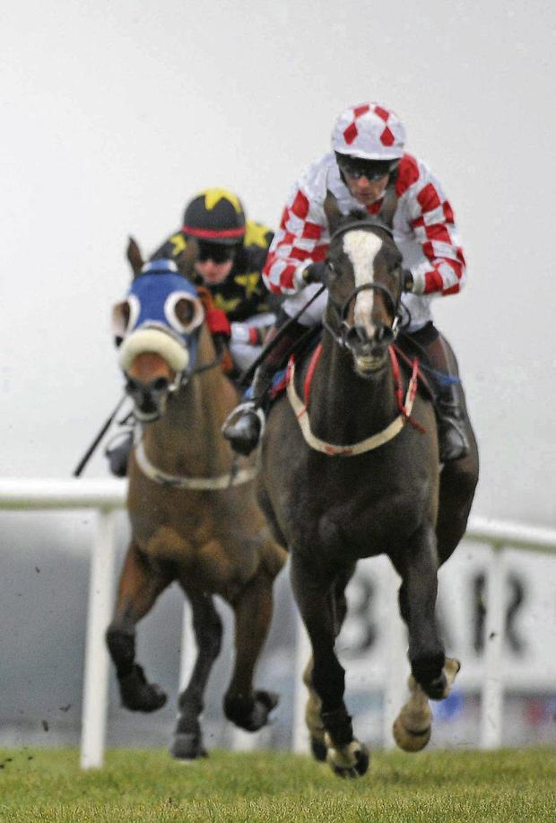 Toner D'Oudairies, with Davey Russell up. Picture: Barry Cregg / SPORTSFILE