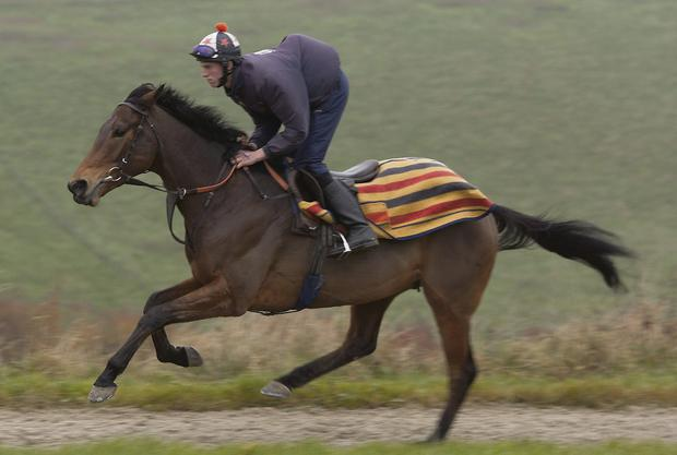 The Alan King-trained Invictus. Picture: Square In The Air/Handout/PA Wire