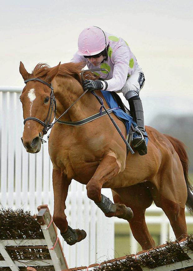 Annie Powe, with Ruby Walsh up. Photo: Barry Cregg / SPORTSFILE