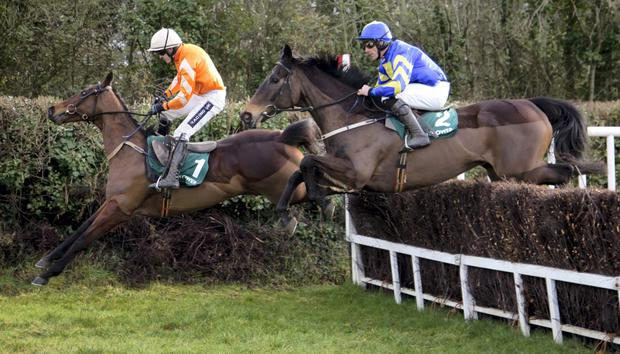 Mallowney (right) and Davy Russell jump with Twilight before winning the Paddy Power Your Local Betting Shop Chase (Grade 2) Naas