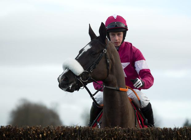 Bryan Cooper and Don Cossack before their nine-and- a-half length victory at Thurles (Racing Post)