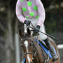 Vroum Vroum Mag with Ruby Walsh on board Photo:Sportsfile