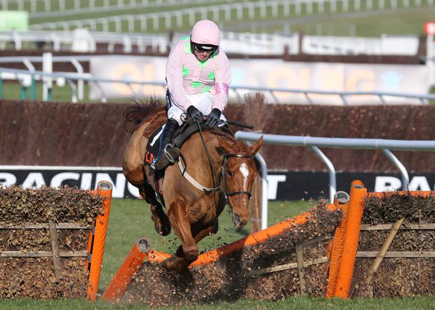 Annie Power hasn't been seen this season but is still the clear favourite for her race at the Cheltenham Festival: Collin Dumfries