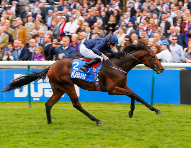 Air Force Blue (p) and Alice Springs could make the Guineas weekend into a great one for Aidan O'Brien. Photo: www.racingpost.com