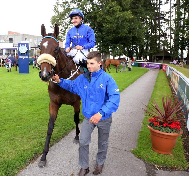 Trainer Mick Halford is hopeful of getting his Godolphin-owned filly Anamba back on track this weekend: Alain Barr
