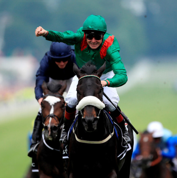 Harzand can record an English/Irish Derby double. Photo: David Davies/PA Wire