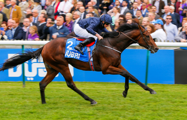 Air Force Blue, with Ryan Moore aboard, wins the Dubai Dewhurst Stakes last October at Newmarket. Photo: Mark Cranham