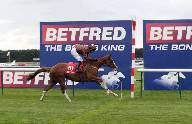 Top Notch Tonto with Dale Swift up winning at Haydock