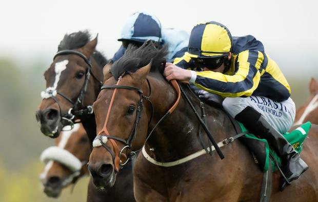 My Dream Boat, with Adam Kirby aboard, on the way to winning the Gordon Richards Stakes at Sandown last April. Photo: Edward Whitaker