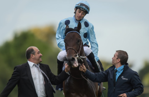 Found will probably have to play second fiddle to Almanzor in the Champion Stakes at Ascot