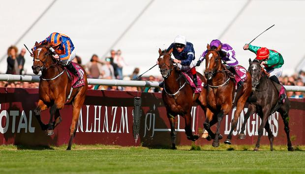 Prix de l'Arc de Triomphe winner Found. Pic: Getty Images
