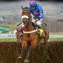 Cue Card should start his season with a win