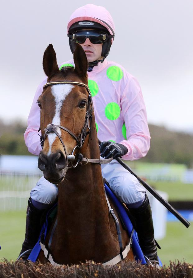 Vautour and Ruby Walsh before running in The Boylesports Champion Chase at Punchestown back in April. Picture: Alain Barr