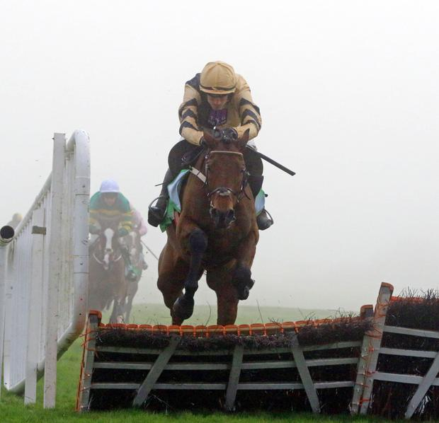 Nichols Canyon on the way to victory at a fog-covered Punchestown. Photo: racingpost.co