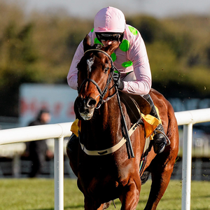 Douvan is not considered to be favourite for the Tingle Creek. Pic: Sportsfile