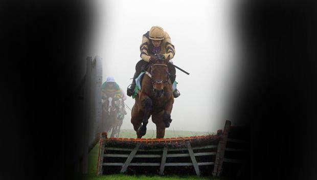 Nichols Canyon can finish off 2016 the same way he ended 2015. Pic: racingpost.com/photos