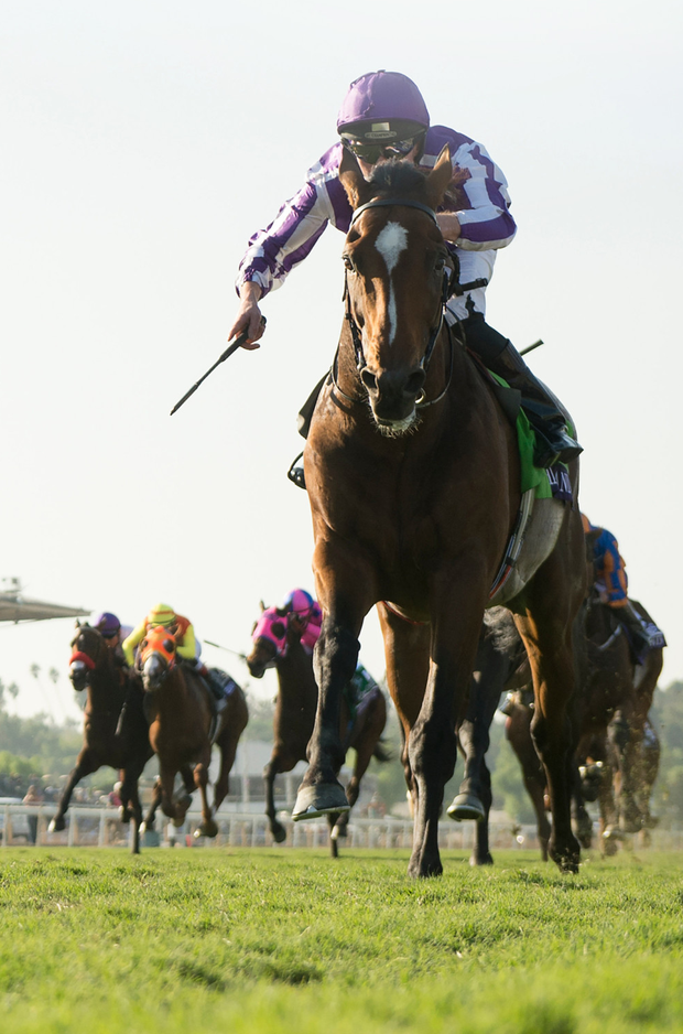 Highland Reel finished off Aidan O'Brien's year in big races Pic: Edward Whitaker