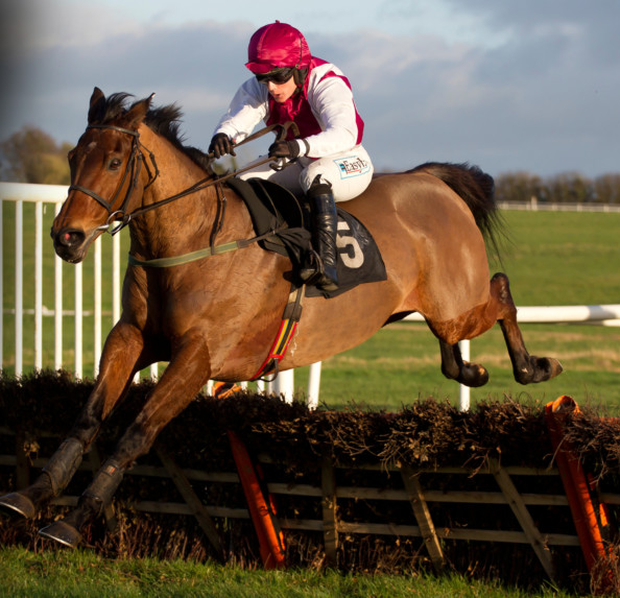 Seabass, with Katie Walsh. The veteran horse is due to run at Fairyhouse tomorrow. Pic: racingpost.com