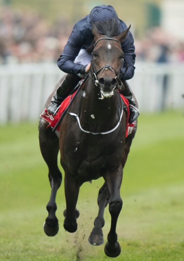 Cliffs Of Moher, with Ryan Moore on board, wins the Dee Stakes at Chester earlier this month