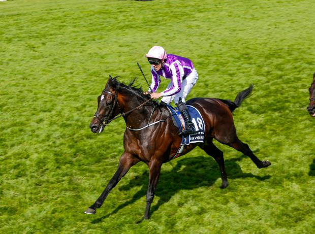 Highland Reel 'courage' seals O'Brien's milestone