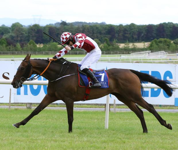 Presenting Julio winning at Limerick last Saturday. Pic: racingpost.com