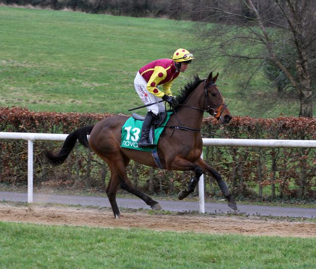 Robbie Power will miss out on riding Flaviana in Limerick this evening