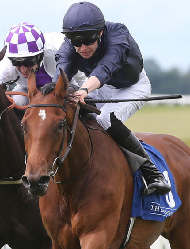 Ballet Shoes competes in the Coolmore Ivawood Stakes at Tipperary this evening