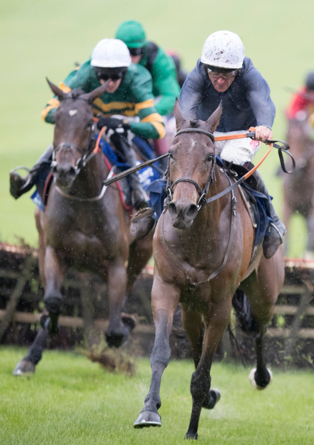 Just Janice will team up with Donie McInerey at Ballinrobe. Pic: racingpost.com