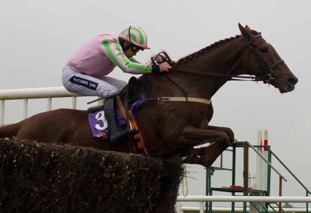 Call It Magic will be seeking success with Ruby Walsh. Pic: racingpost.com