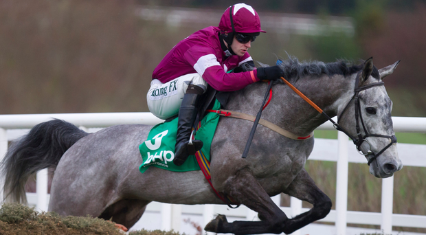 Petit Mouchoir, with David Mullins on board, on the way to winning the BHP Irish Championn Hurdle (Grade 1) at Leopardstown back in January