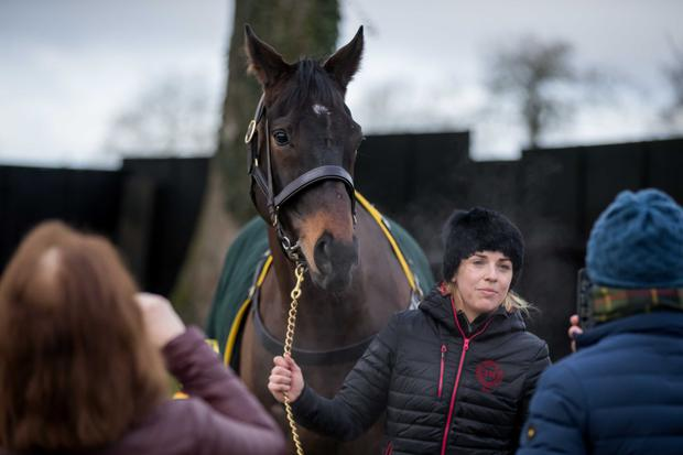 Kate Harrington with Sizing John at the Leopardstown Christmas Festival launch. Pic: Inpho