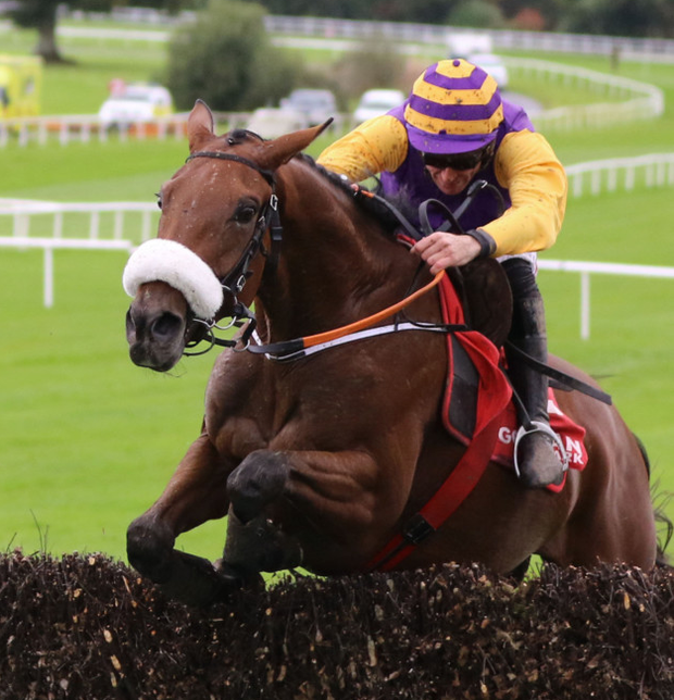 Brelade looks to be overpriced at Clonmel today. Pic: racingpost.com