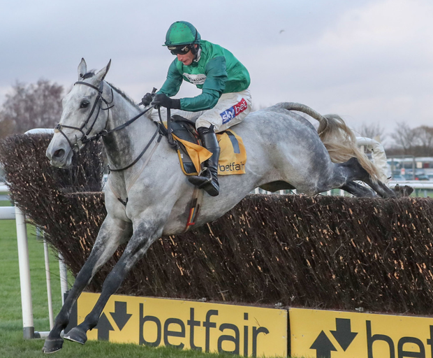 Back in action: Bristol De Mai can upset the odds in the Betway Bowl at Aintree today