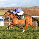 BATTLE ROYAL: Catwalk King, ridden by Finny Maguire, can score for Liz Doyle