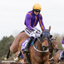 Fortune favours the brave: Wicklow Brave, with Patrick Mullins on board, take the last flight on the way to winning the Betdaq Champion Hurdle last April in Punchestown