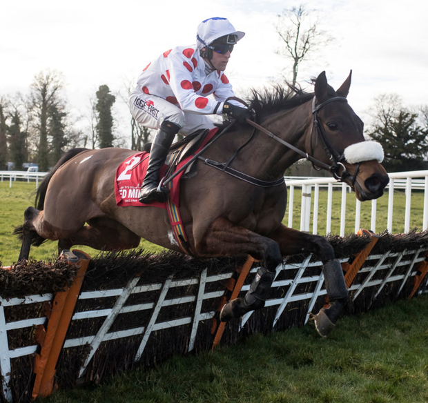 Forge Meadow and Robbie Power win at Gowran Park last February