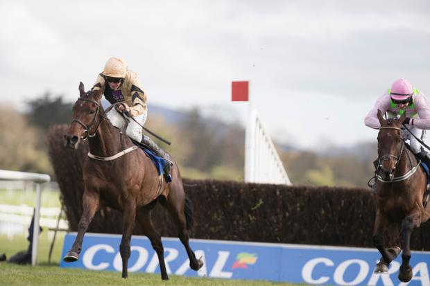 MOUNT: Bellshill should be Ruby Walsh's partner in the Savills Chase on Friday. Photo: Racing Post