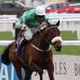 BOOKED IN: Presenting Percy is expected to make his seasonal return next week. Photo: RacingPost.com