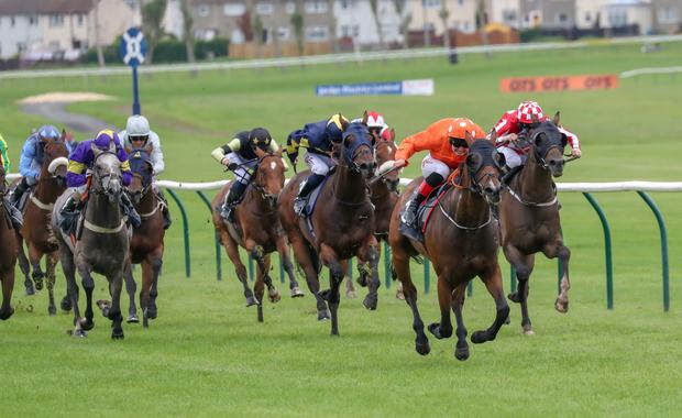 Markhan, with Connor Beasley on board, on the way to winning at Ayr last August