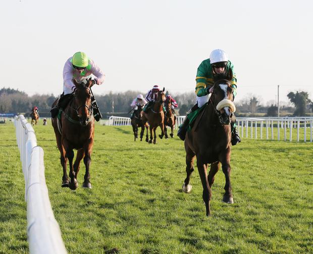 READY TO FLY: Anibale Fly is good each-way value in the Gold Cup